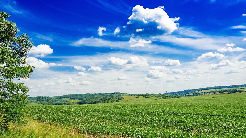 Campo verde in giornata soleggiata con qualche nuvola in cielo a rappresentare quando sia ecologico l ozono